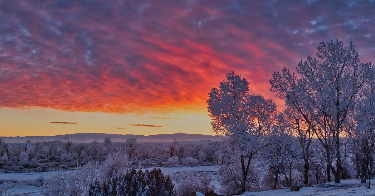 Wind River hoarfrost sunset