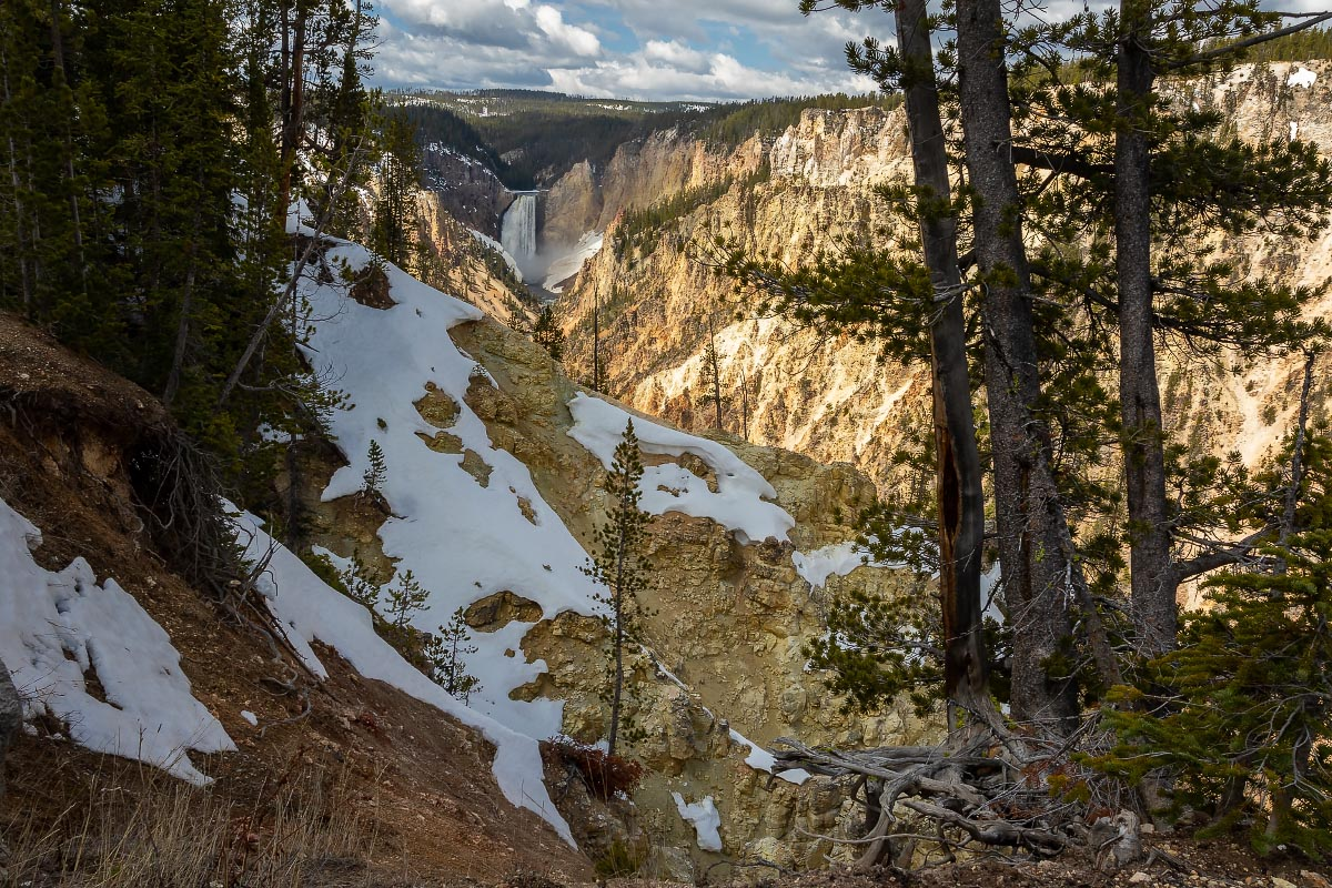 Grand Canyon of the Yellowstone Wyoming