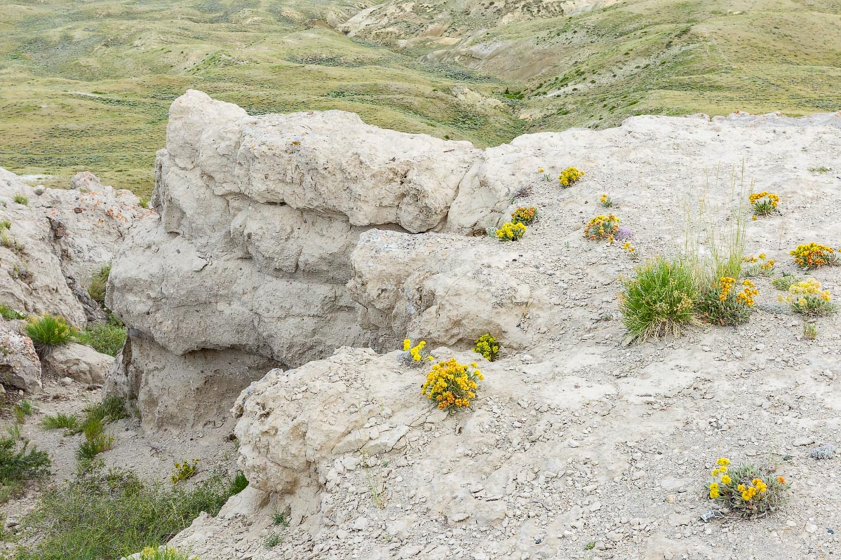 Beaver Rim Wyoming
