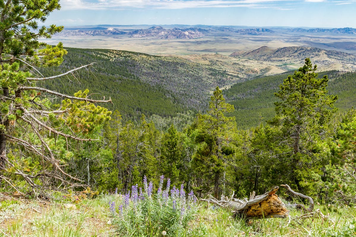 Green Mountain Wyoming