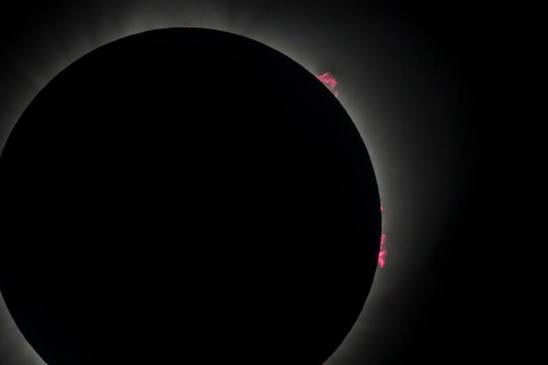 2017 Solar Eclipse Solar Prominences