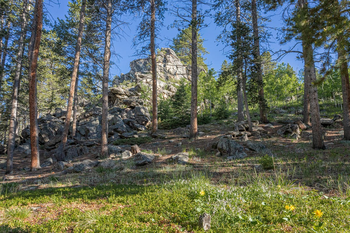 Middle Fork Campground Wyoming