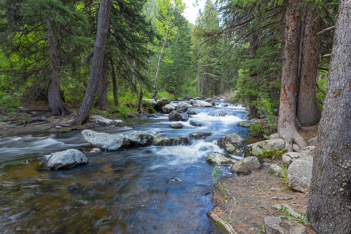 Middle Clear Creek Big Horn Mountains Wyoming
