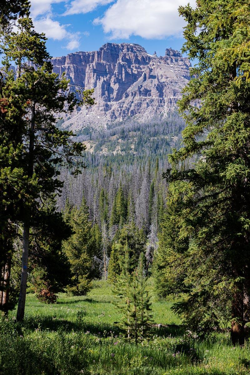 Pinnacles Wyoming