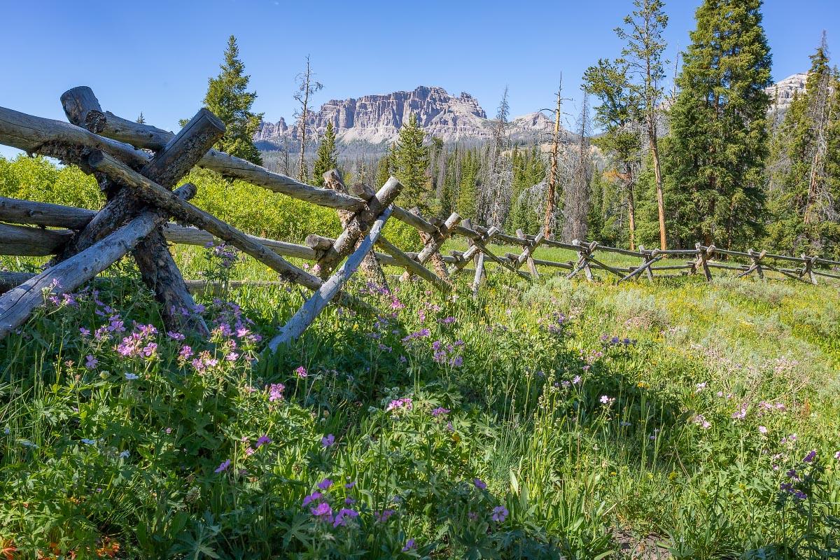 Falls Campground Wyoming