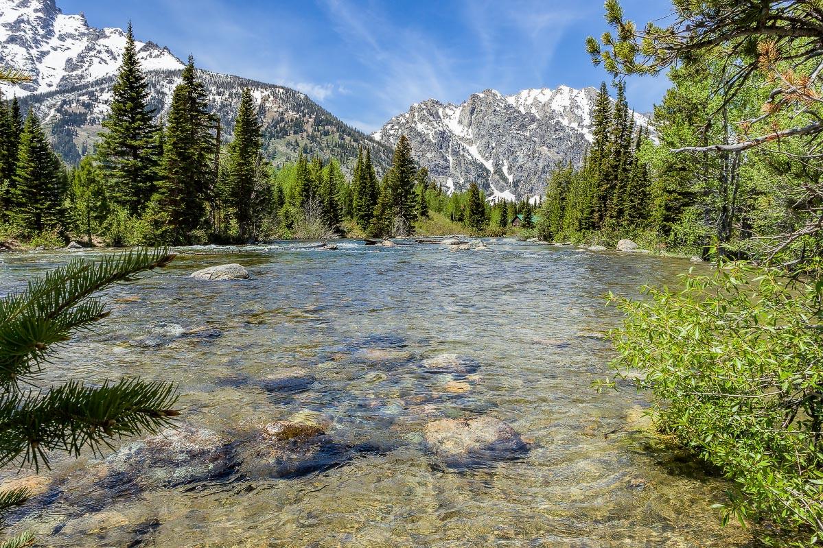 Cottonwood Creek Grand Teton National Park Wyoming